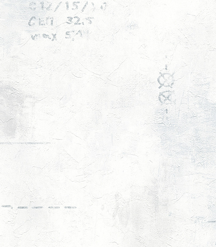 953906.jpg