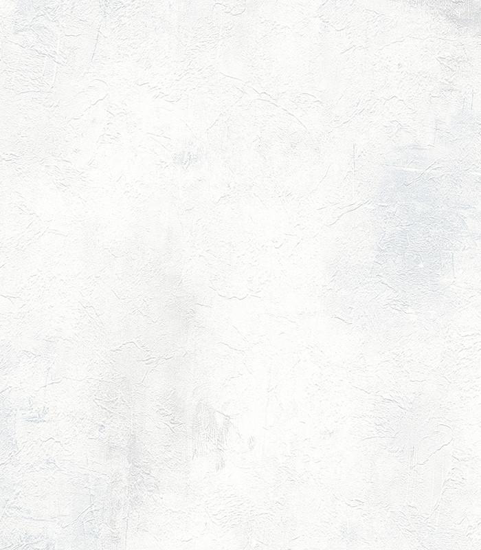 953916.jpg